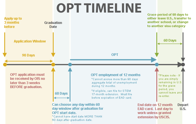 opt申請 timeline