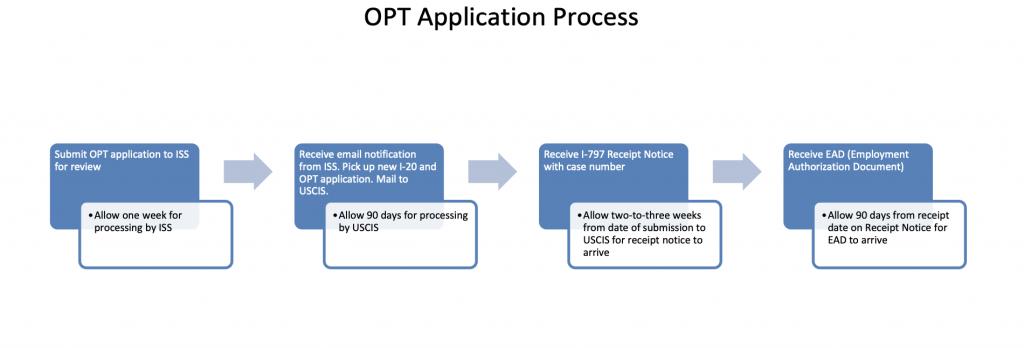 opt申請 過程